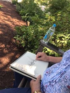 Rosie sketching